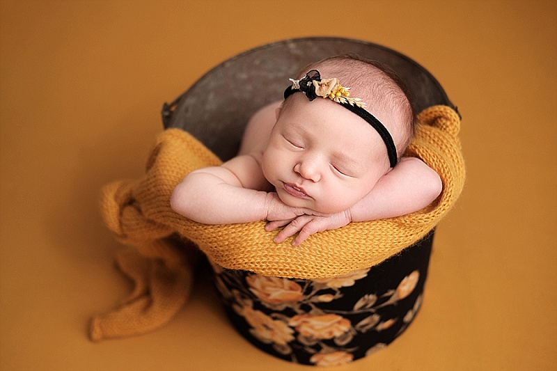 Macomb Newborn Photographer | Arya