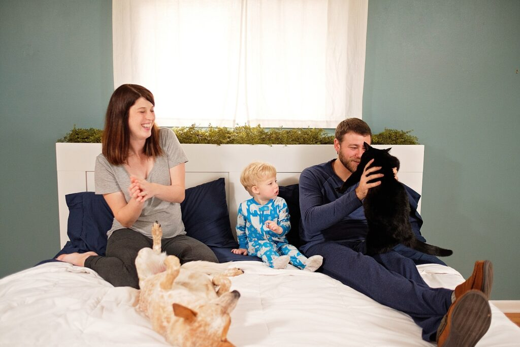 lifestyle maternity with pets