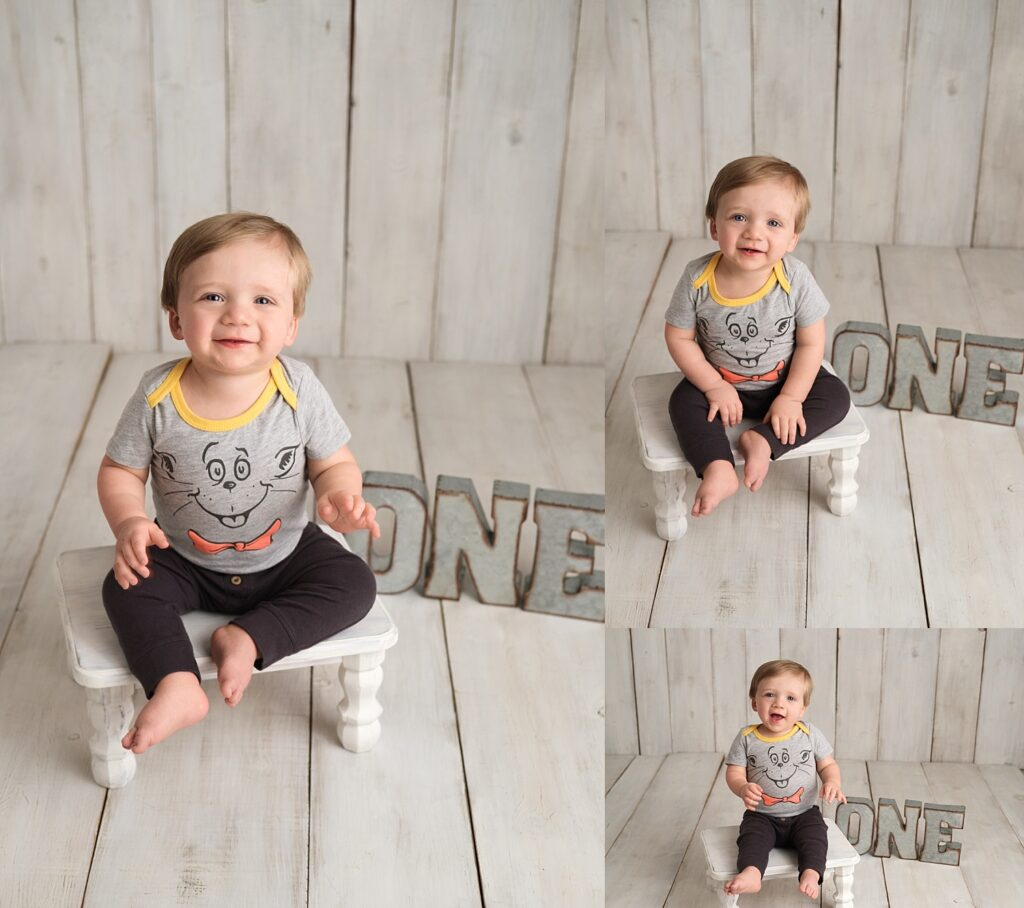 Mt Clemens First Birthday Session